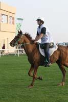 /international/UAE/2009PresidentsCup/gallery/04Sat/thumbnails/0902PCup_283.jpg