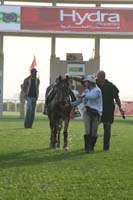 /international/UAE/2009PresidentsCup/gallery/04Sat/thumbnails/0902PCup_308.jpg