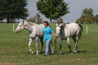 /international/USA/2009KentuckyHorsePark/gallery/01/thumbnails/0910KYC_0012.jpg