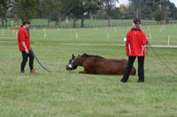 /international/USA/2009KentuckyHorsePark/gallery/01/thumbnails/0910KYC_0021.jpg