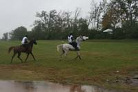 /international/USA/2009KentuckyHorsePark/gallery/09/thumbnails/0910KYC_0707.jpg