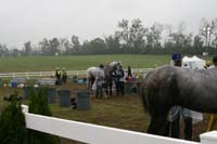/international/USA/2009KentuckyHorsePark/gallery/10/thumbnails/0910KYC_0789.jpg