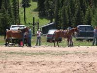 /international/USA/2010BigHorn/gallery/RideGallery/thumbnails/IMG_5667.jpg