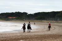 /international/Uruguay/2007Rocha/Gallery/Dec2_beach/thumbnails/IMG_1445.jpg
