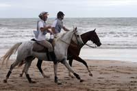 /international/Uruguay/2007Rocha/Gallery/Dec2_beach/thumbnails/IMG_1565.jpg