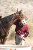 /oreana/owyheecanyonlands/2008/gallery/01/thumbnails/0809OWYC_074.jpg