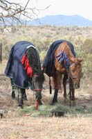/oreana/owyheecanyonlands/2008/gallery/01/thumbnails/0809OWYC_094.jpg