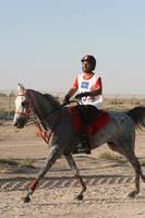 international/Bahrain/2009GrandPrix/gallery/02/thumbnails/0902UAE_516.jpg