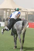 international/Bahrain/2009GrandPrix/gallery/03/thumbnails/0902UAE_592.jpg