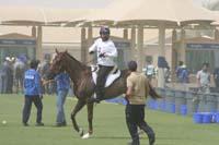 international/Bahrain/2009GrandPrix/gallery/03/thumbnails/0902UAE_622.jpg