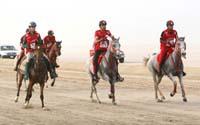 international/Bahrain/2009HMTheKingsEnduranceCup/gallery/mediagallerymar10/thumbnails/ride10.jpg