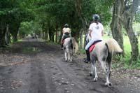 international/Guatemala/2008MayanAdventure/gallery/01gallery/thumbnails/8035_0156.jpg