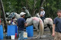 international/Guatemala/2008MayanAdventure/gallery/03gallery/thumbnails/IMG_7695.jpg