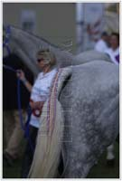 international/Italy/2009Assisi/gallery/02/thumbnails/IMG_3822.jpg
