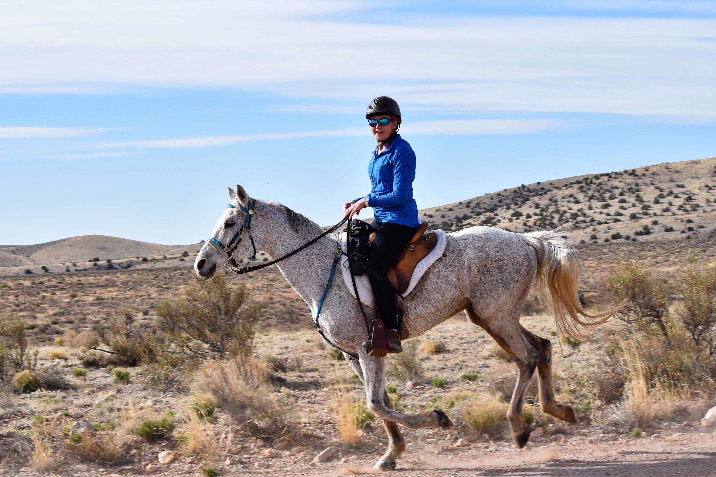 Meet My Endurance Horse Ragnar and Karen Binns-DiCamillo