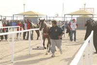 international/Kuwait/2009ShkNasserCup/gallery/Osama/thumbnails/USAM9609.jpg
