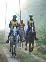 international/Poland/2008Warka/gallery/thumbnails/horses_an_the_rout.jpg