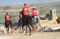 international/Spain/2008Figarol/gallery/02Loop1B/thumbnails/08FIG_073.jpg