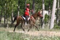 international/Spain/2008Figarol/gallery/07Loop4/thumbnails/08FIG_430.jpg