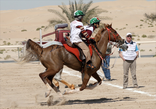 Hamdan Mousa Mohammad Al Hammadi won the His Highness The President of the United  Arab Emirates Cup for Junior and Young Riders at the Boud Theib Endurance  ...