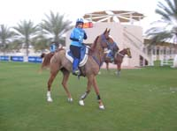 international/UAE/2009LadiesChallenge/gallery/01/thumbnails/0902UAE_206.jpg