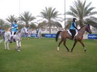 international/UAE/2009LadiesChallenge/gallery/01/thumbnails/0902UAE_217.jpg