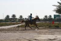 international/UAE/2009LadiesChallenge/gallery/02/thumbnails/0902UAE_324.jpg