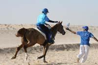 international/UAE/2009LadiesChallenge/gallery/02/thumbnails/0902UAE_331.jpg