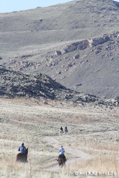 Antelope Island endurance ride recap