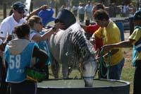 international/Uruguay/2009PanAm/gallery/apr25_Camp2/thumbnails/IMG_4448.jpg
